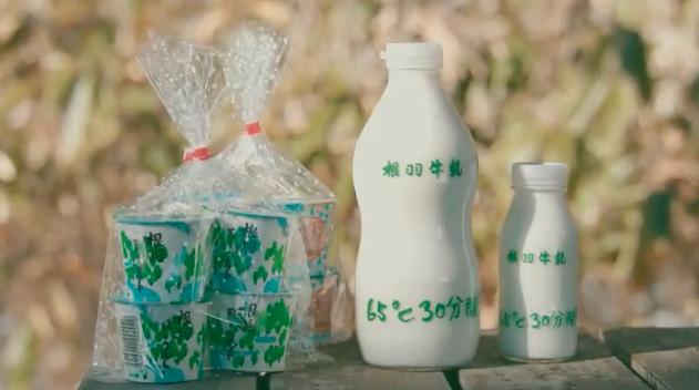 根羽村で作られる根羽牛乳